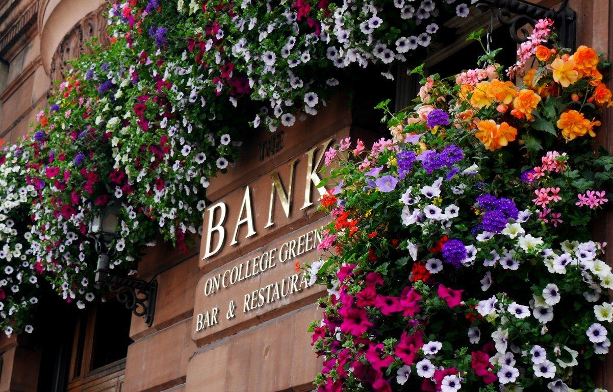 Flower Girl Baskets Dublin : Dublin in bloom at night lush colour alive bondi